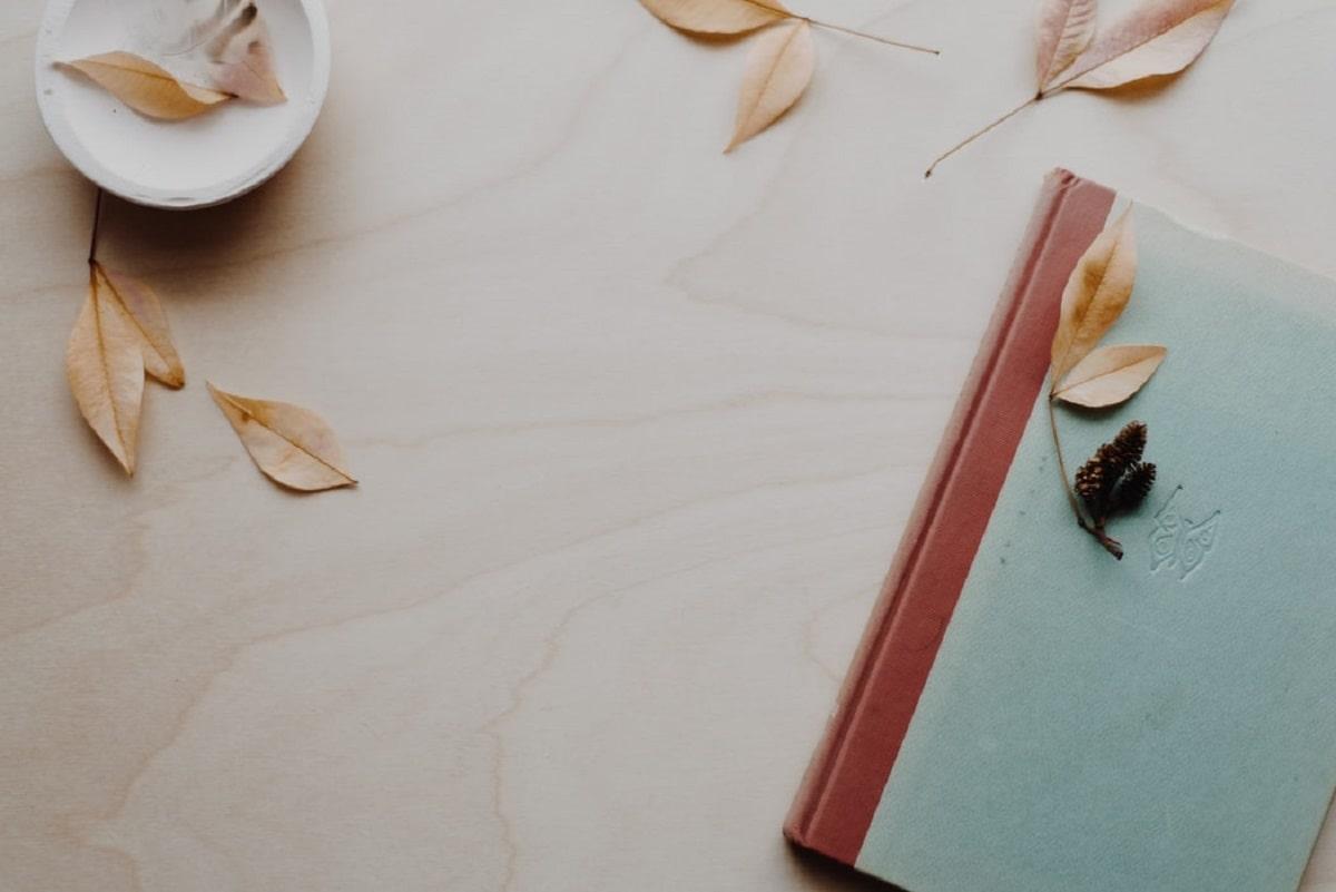 フランス語の文章を作るおすすめの参考書【初級から中級へステップアップ】